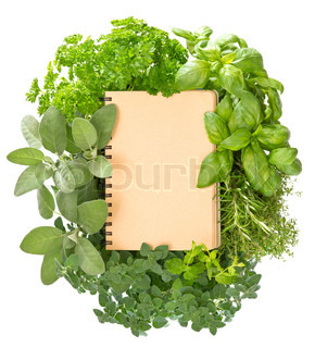 empty recipe book with variety fresh herbs