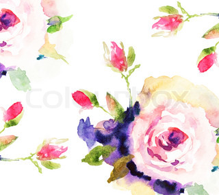 Roses, watercolor illustration