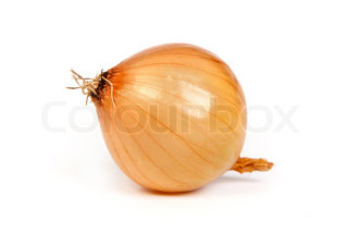 One onion, isolated on white