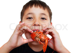 a little boy playfully eating crayfish