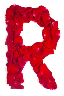 Letter R made from red petals rose on white