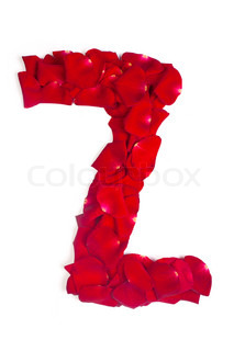 Letter Z made from red petals rose on white
