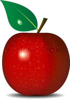 Vector illustration of fresh red apple isolated on white background. Gradient mesh and blend is used.