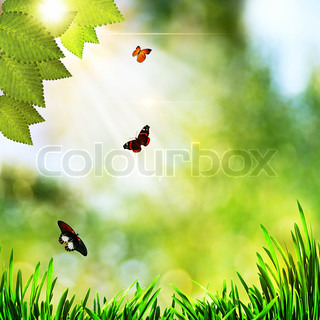 beauty natural backgrounds with green grass and butterfly