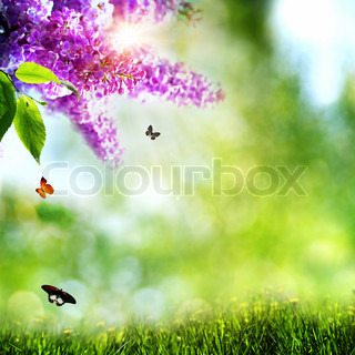 Summer natural backgrounds with lilacs,butterfly and beautiful bokeh