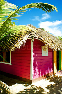 Tropical hut with palm trees