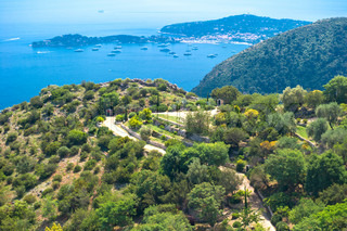 beautiful mediterranean landscape Provence, France