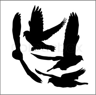 Doves vector silhouettes, set of four