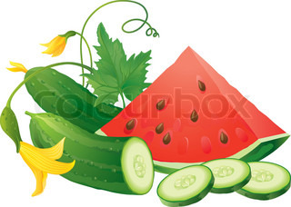 Cucumber slices and juicy watermelon