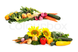 two borders of autumn vegetables isolated on white