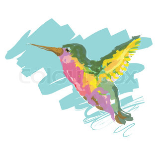 Colorful humming bird, original sketch