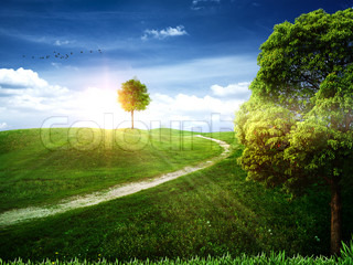 Natural art backgrounds with apple tree