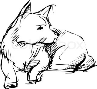 sketch of home animal dog that lies