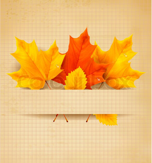 Colorful autumn leaves on a old paper  Back to school background