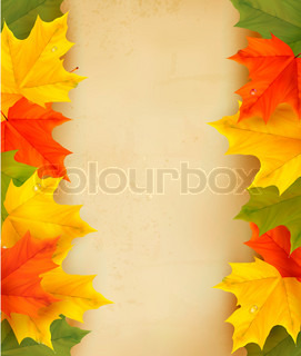 Autumn leaves with old paper  Back to school