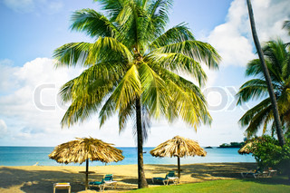 Tropical beach resort with parasols and palm trees