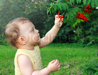 Beautiful baby girl picking the ash berry outdoors on summer green background