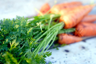 closeup of tops of carrots with blurred carrots in background