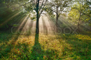 The bright sun rays stock photo colourbox - Impressive house with tranquil environment to get total relaxation ...