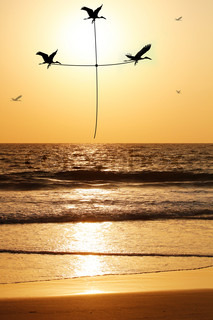 Beautiful & heavenly seaside in the evening with birds carrying thread shaped as holy cross The evening sky is lit by the setting sun with birds flying above the beach & sea reflecting the sunlight