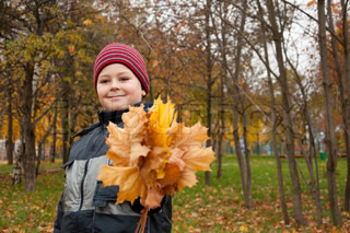 The Boy in the autumn park with a bunch of maple leaves