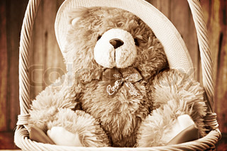 Teddy bear boll in the basket