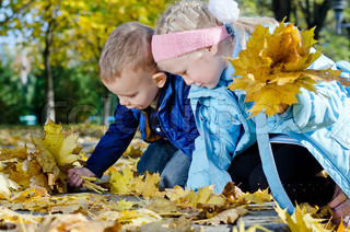 Children searching for autumn leaves