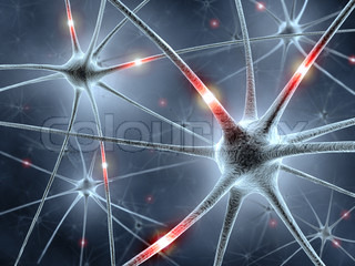 Neurons Network