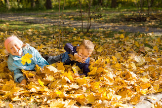 Fun and games with autumn leaves