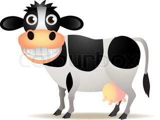 Cute cow isolated