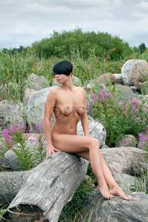 Beautiful nude woman sitting on an old tree
