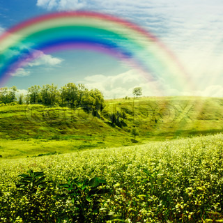 Rainbow on the meadow Abstract natural backgrounds for your design