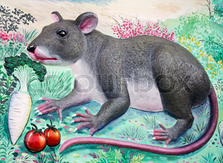 Rat High Relief and Wall Painting