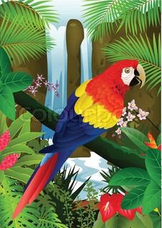 Macaw bird with waterfall background