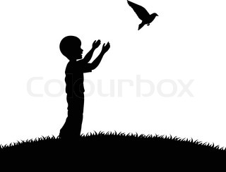 Little boy releasing a white pigeon