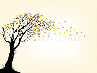 An Autumn Tree Silhouette Royalty Free Stock Images - Image: 27359129