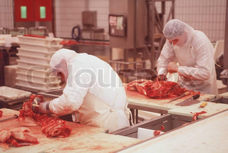 Women working at food industry of meat
