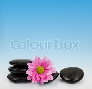 Stones and flower for SPA