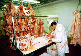 View of a butcher working in slaughterhouse