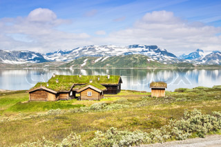 traditional norwegian houses with grass