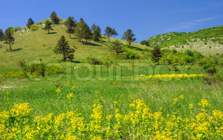 Mountain landscape in Lika , Croatia