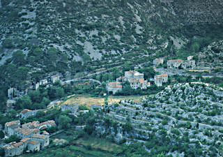 Aerial view of village surrounded with trees
