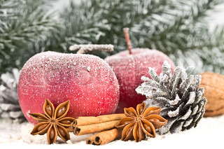 Red Apples and cones in the snow