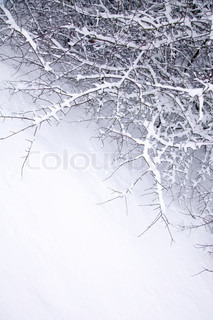 abstract winter