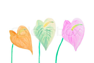 Color Flamingo flowers in watercolor hand painted, isolated