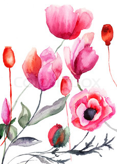Colorful flowers, watercolor illustration