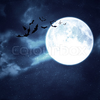 Bats flying in the night