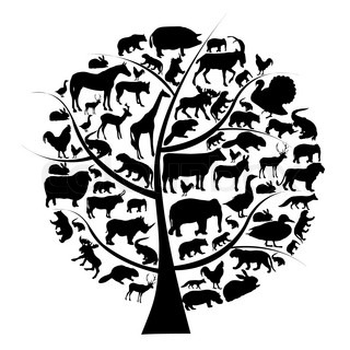 Vector set of animals silhouette on tree
