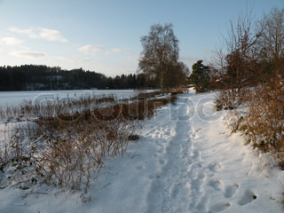 trail through snow along the frozen lake in fine weather