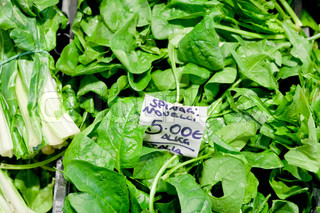 fresh green italian spinach leaves